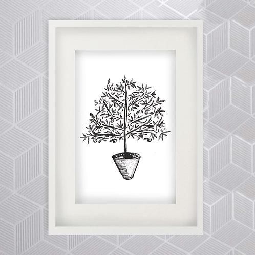 Fruit Tree Print