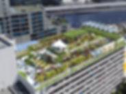 skyfarm.jpeg