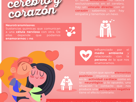 ¿Cómo surge el amor?