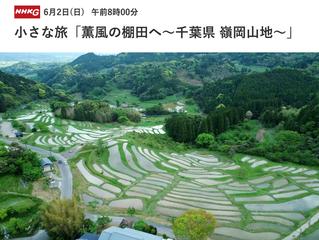 6月2日(日)NHK総合「小さな旅」