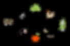 Agroecology Club Logo_2020_RGB.png