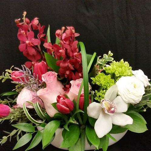 SA 7 (mokara & cymb orchid arrangement)