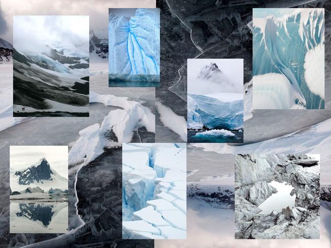 Arctic Mood Board