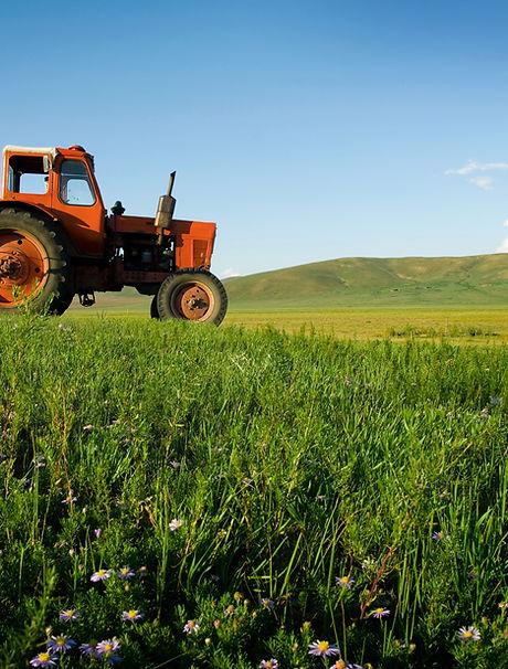 Tracteur au travail