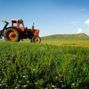 Zambia - Zambia Agrifood Processing Zone (ZTAZ) - ESIES Summary