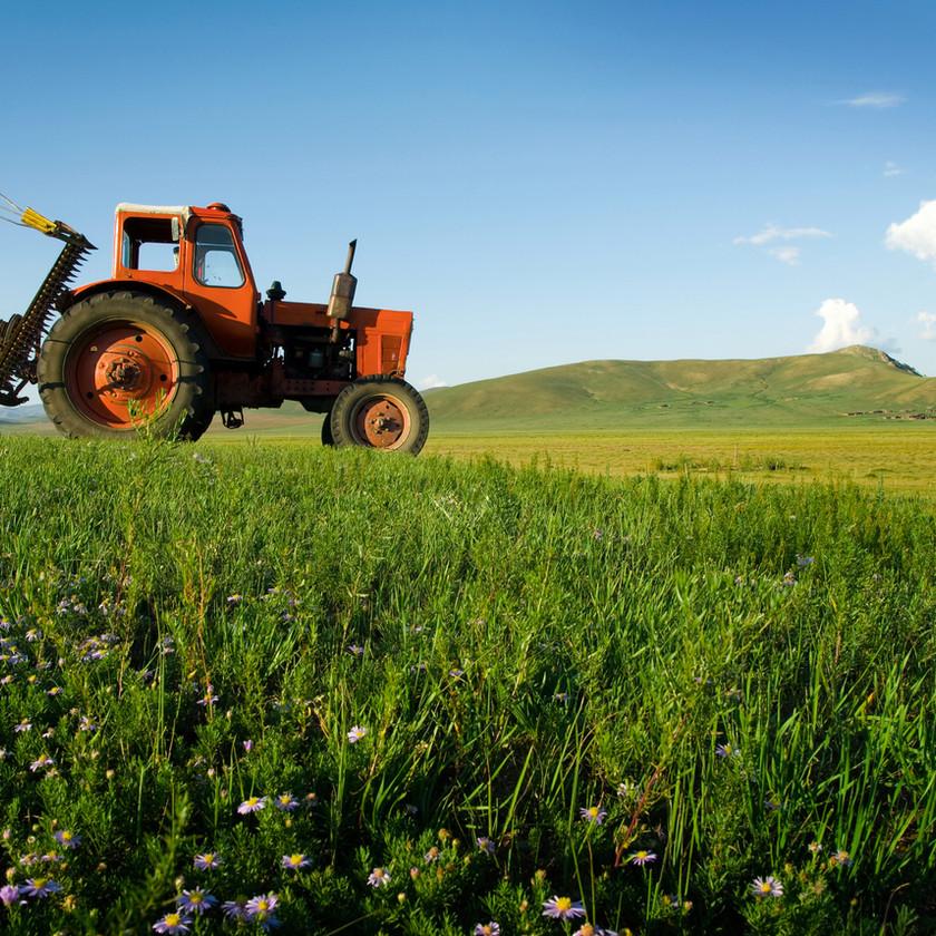 Orange tractor driving through a lush green field.