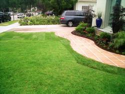 Beverly Hills Landscape