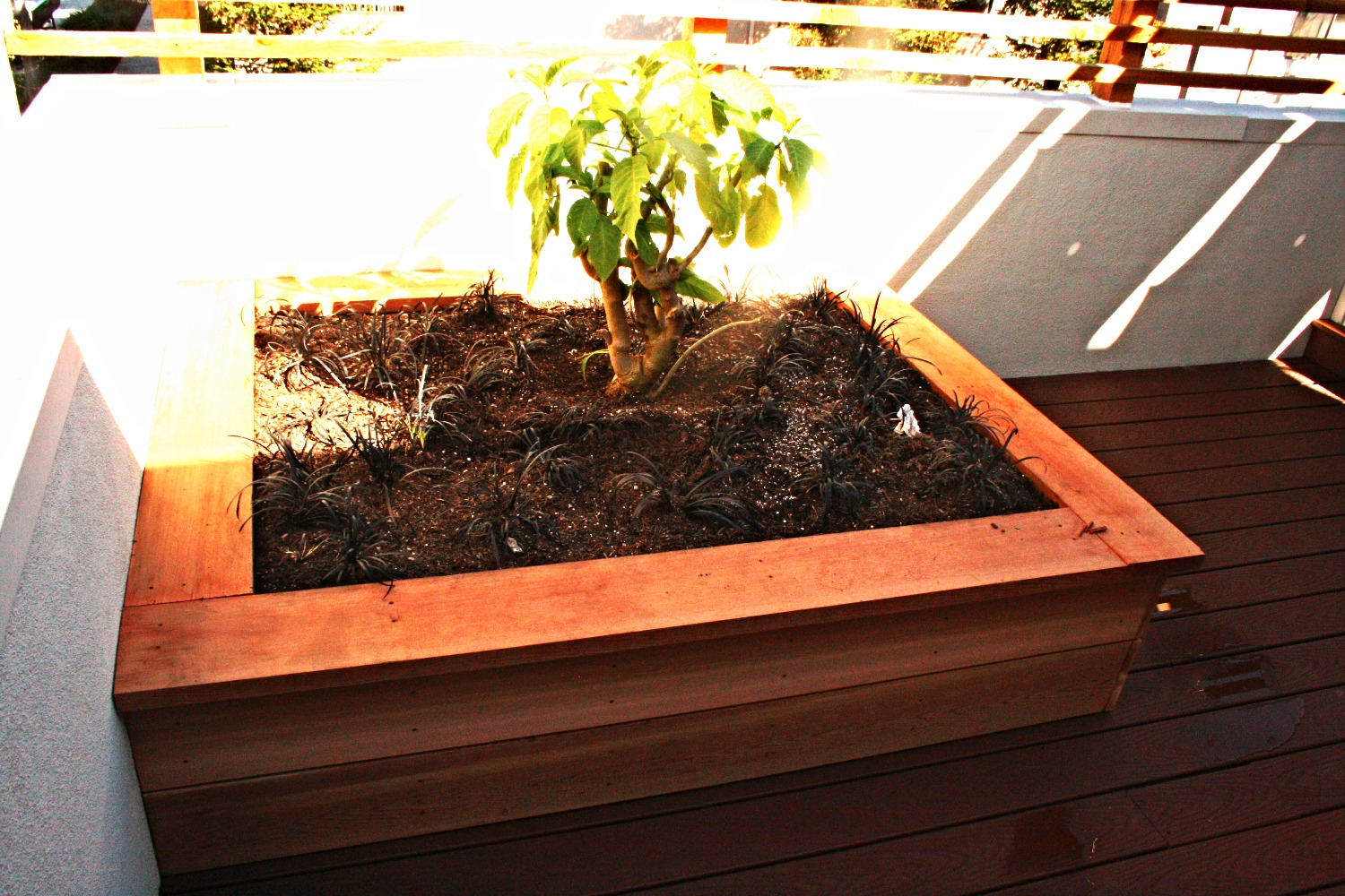 Eagle Rock - Deck Remodel - Planter