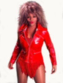 Michelle Marshall Tina Turner Lg.jpg