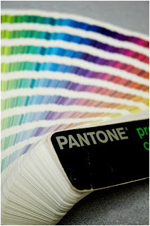 More than just a pretty face: What colors represent in logo design