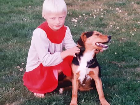 Unelma koirahoitolasta