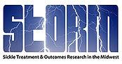 STORM_logo.jpg