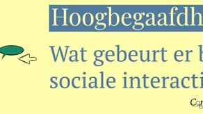 Hoogbegaafdheid en Sociale interactie