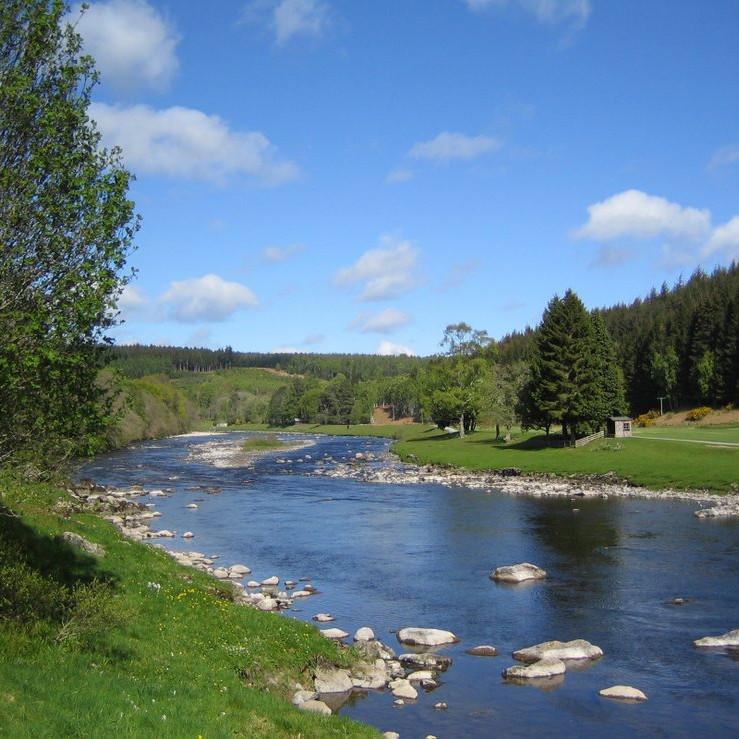 Guided River SUP Milltimber Bridge - Duthie Park Aberdeen