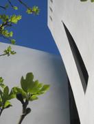 PROJETS EN URBANISME, BARCELONA, ESPAÑA