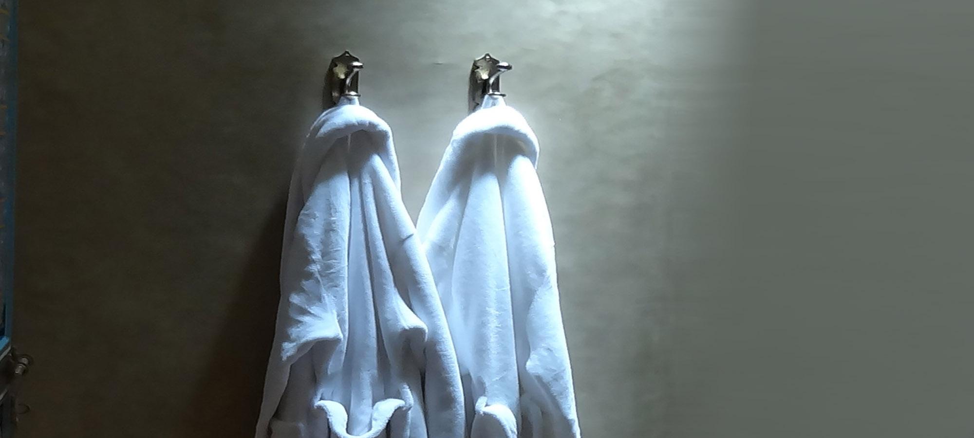 Dressing Gowns copy.jpg