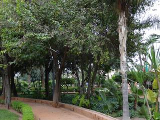 Moulay Abeslam Cyber Park Marrakech
