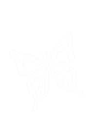 thicc bfly.png