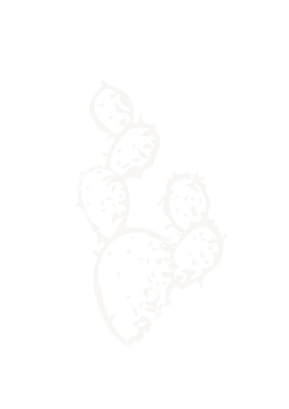 prickly pear.png