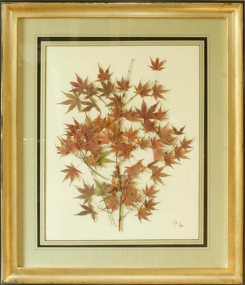 Cuadro Flores Naturales Secas Otoñales 68x58