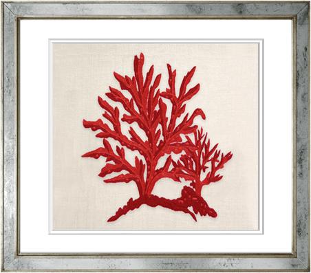 Coral Origina c/hijo en Colores 18