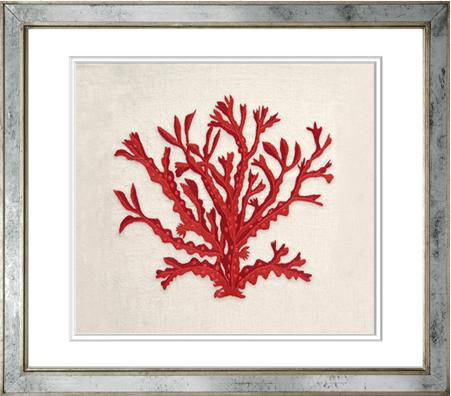 Coral Original en Colores 18