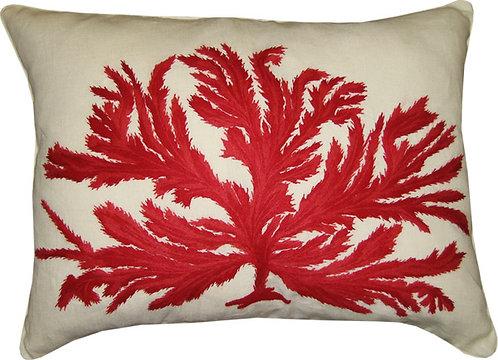 Coral Marino en Colores #13