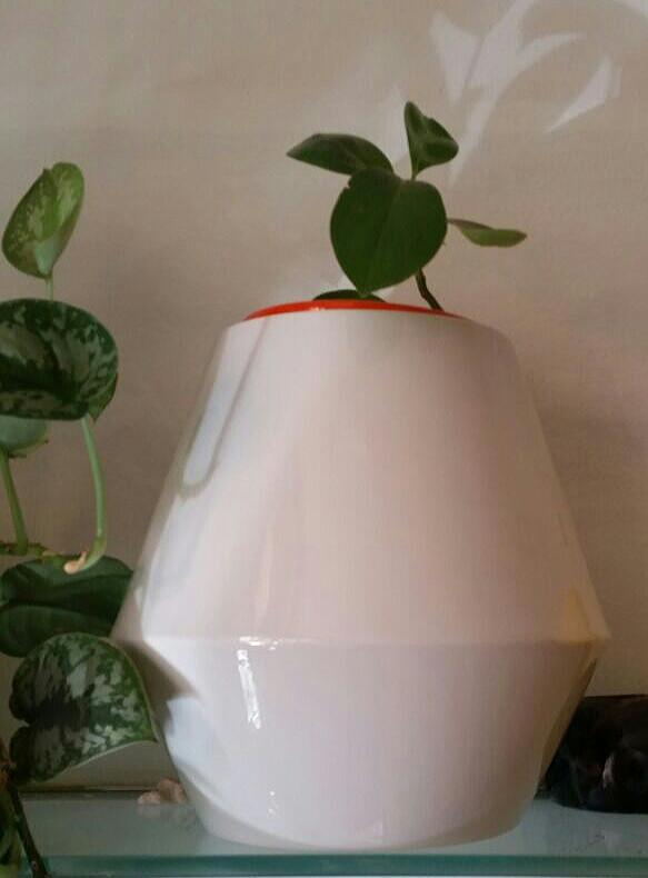 Panta Rhei - die bepflanzbare Urne für zu Hause.