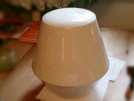 Innovatives Wien: Eine bepflanzbare Urne für dein Zuhause.