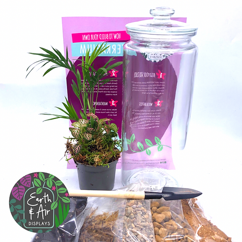 Cookie Jar Terrarium kit