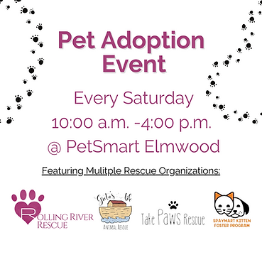 Copy of Pet Adoption Event.png