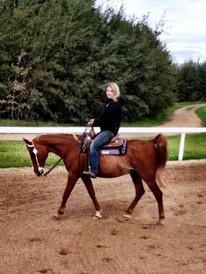 Sophia Rose Equestrian