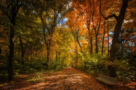 Parc des Bois-de-Coulonge, Québec, Canada.