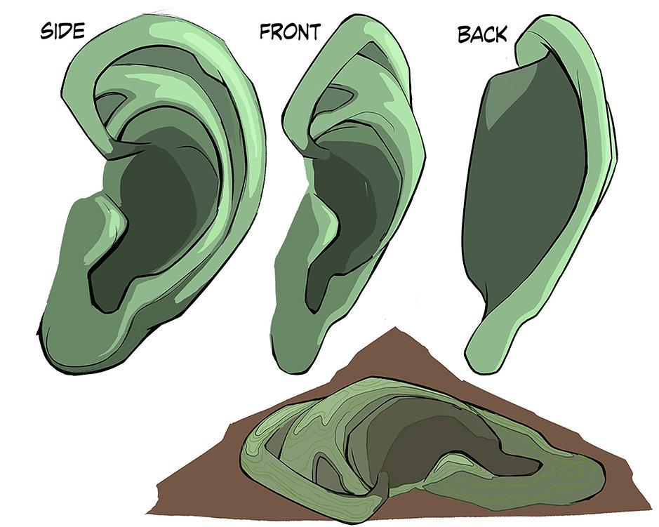 How to Draw Ears 03.jpg