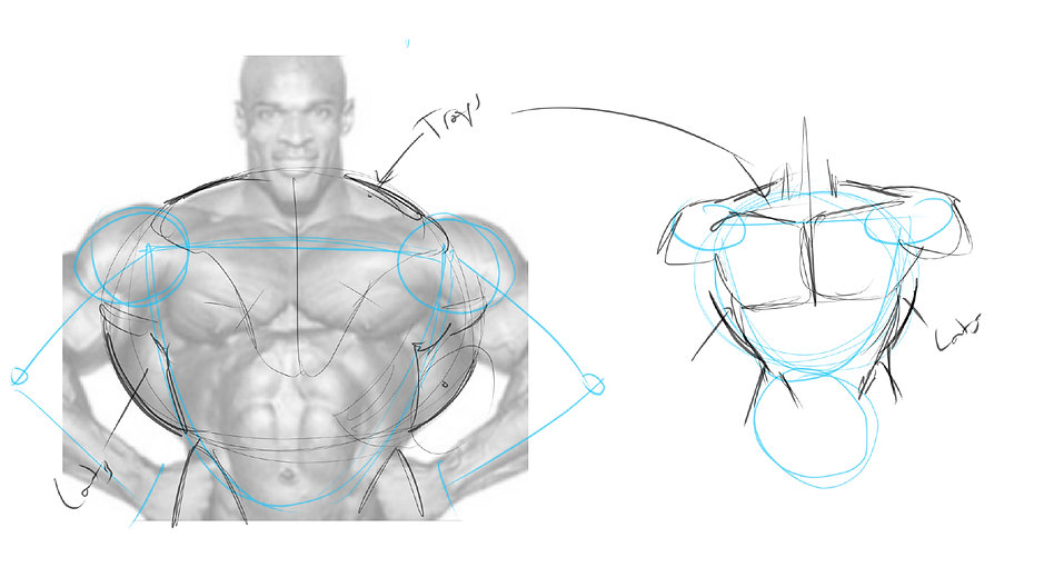 How To Draw Comics Anatomy Preview 1.jpg