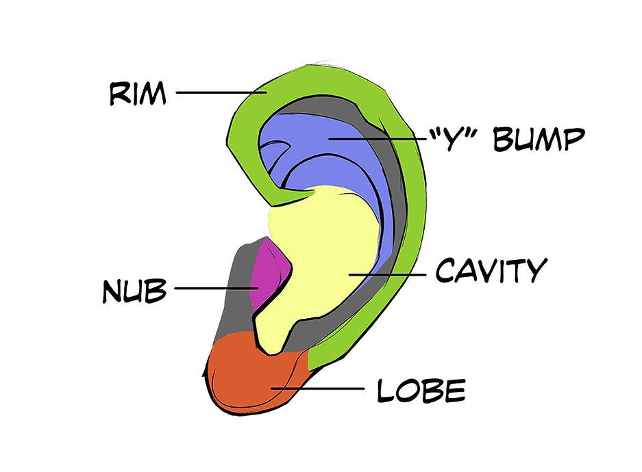 How to Draw Ears 01.jpg