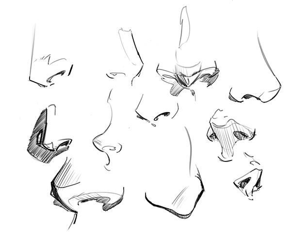 How to Draw Noses 16.jpg