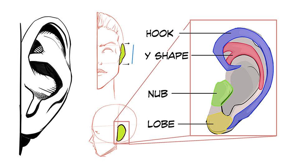 How to Draw Ears 00.jpg