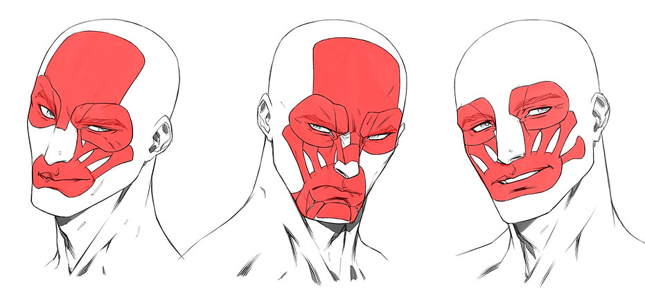 Heads and Faces Workshop - Facial Expressions.jpg