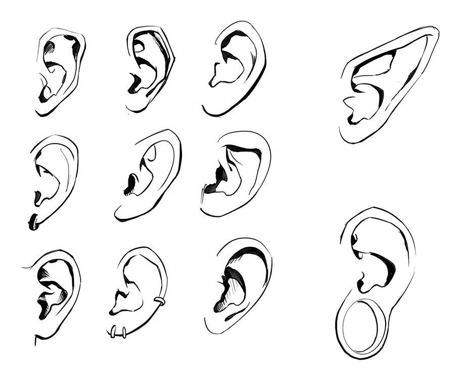 How to Draw Ears 04.jpg