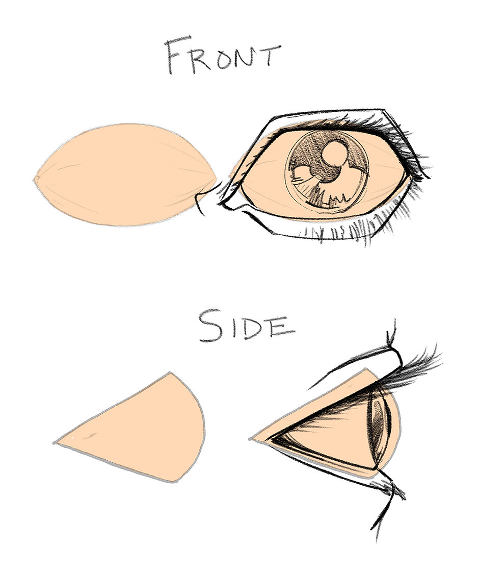 How To Draw Eyes 11.jpg