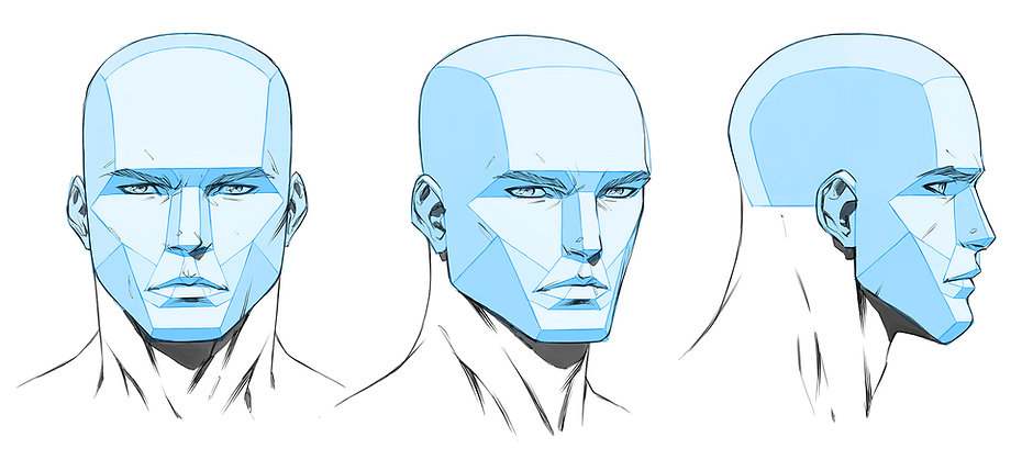 Heads and Faces Workshop - Head Planes.jpg