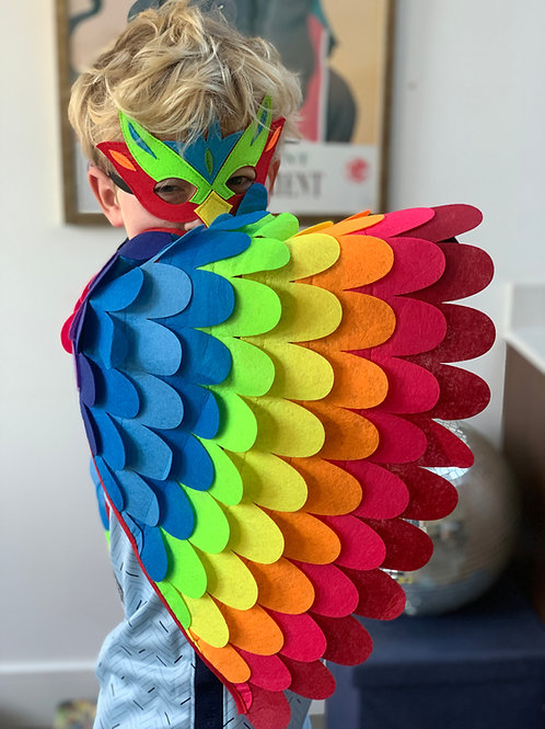 Carnival rainbow wings and mask