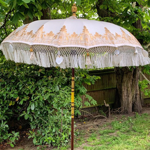 Indian_parasol_little_top