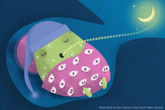 How cells put themselves to sleep