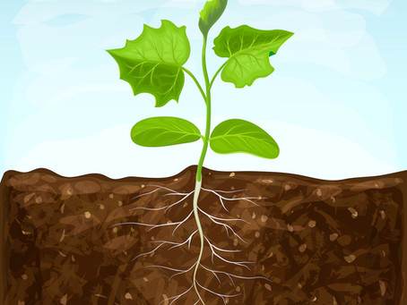 Serious Soil Science and AGT-50 Benefits