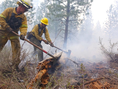 Smoke Effects on Wildland Firefighters