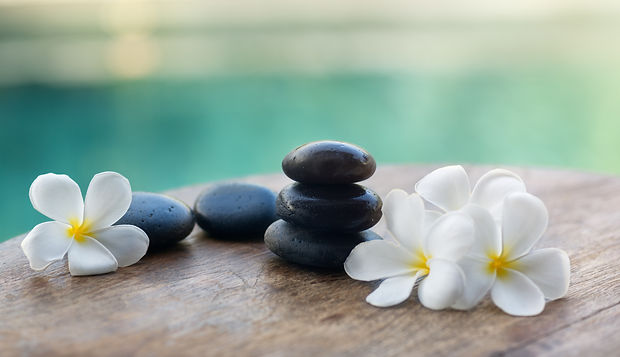 white-frangipani-with-black-stones-PYHQJ