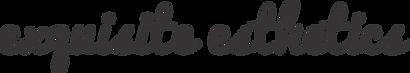 ex logo.png