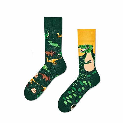 The dinosaurus socks kids and regular